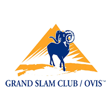 Grand Slam Club Ovis